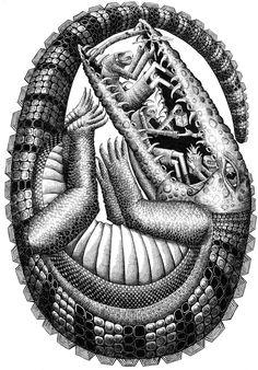 Phlegm's Detailed Drawings and Murals Street Art London, 3d Street Art, Street Artists, Crocodile Illustration, Illustration Art, Graffiti Art, Alligator Tattoo, Vintage Graphic Design, Unusual Art