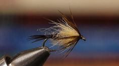 Soft Hackle Emerger. Detailed instructions for tying a Soft Hackle Emerger.