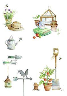 Lynn Horrabin - garden.jpg