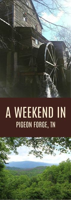 A Jam-Packed Weekend in Pigeon Forge, TN! How to spend a weekend in Pigeon Forge, Tennessee with kids! Packing List For Vacation, Vacation Spots, Vacation Outfits, Packing Lists, Vacation Ideas, Vacation Places, Alaska Cruise, Alaska Travel, Tennessee Vacation Kids