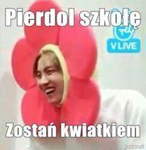 Oto memy związane z kpopem!  Zapraszam xD #losowo # Losowo # amreading # books # wattpad K Meme, Bts Memes, Really Funny Pictures, Funny Photos, Kpop, Polish Memes, Funny Mems, Pokemon, Dead Memes