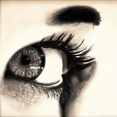 Reflection - A Pencil Drawing by Casey Neal