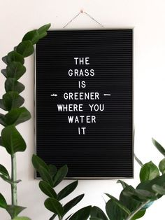 The grass is greener where you water it - motivational quotes