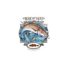 Redfish Fishing T-Shirt (Apparel)