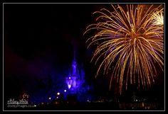 Wishes @ The Magic Kingdom