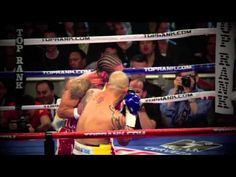Miguel Angel Cotto - the boricua warrior: Highlights, tribute and traini...