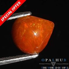 2.00 Cts Orange A++ Natural Ethiopian Welo Fire Opal Cabochon Play of Color 350