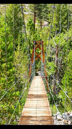 Suspension bridge over Wood Creek on John Muir Trail. I want to do the John Muir 211 mile trail summer 2016