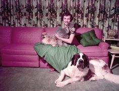 A young Betty White with a bunch of dogs. The corgi looks put out and annoyed. I the saint bernard. Betty White, Pink Couch, Fu Dog, St Bernard Dogs, Animal Activist, Pink Sparkly, White Dogs, Corgi, Pets