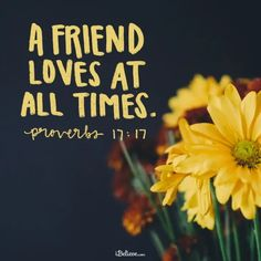 """A Prayer to Value Friendship over Disagreements By Janet Thompson """"A friend loves at all times."""" (Proverbs Sadly, during this presidential election, we've witnessed adult meltdowns among friends and relatives who found it . Bible Verses About Friendship, Friendship Over, Bible Verses About Love, Favorite Bible Verses, Friendship Quotes, Friendship Prayer, Funny Friendship, Biblical Quotes, Sayings"""