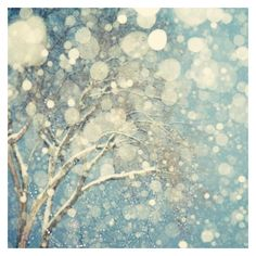 Winter Landscape Photography, Abstract Tree Art Print, Snowflakes,... ❤ liked on Polyvore featuring home and home decor
