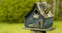 Rustic Wood Birdhouse Design Ideas, Natural Choices for Feathered Friends Bird House Feeder, Bird Feeders, Birdhouse Designs, Bird House Kits, Bird Aviary, Bird Cages, Fairy Houses, Little Houses, Kit Homes
