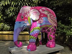 #03 PINK PARADISE by Opas Chomchean. Singapore Zoo.