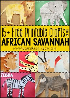 African Savannah Animals Round-Up