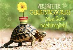 Nachtragliche Geburtstagswunsche Lustig Lustige Postkarten Spruche