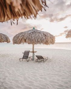 Eagle Beach, Aruba shared by Kylie on We Heart It Summer Wallpaper, Beach Wallpaper, Summer Vibes, Eagle Beach Aruba, Beach Aesthetic, Beach Picnic, Beach Scenes, Vacation Spots, Aesthetic Pictures