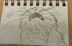 Mini sketchbook #5 in pencil
