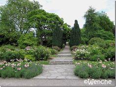 Botanisk hage, Visby Gotland, Sweden