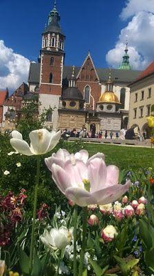 Wawel, Kraków, Source: http://fotoodyseja.blogspot.com/2016/05/wawel-w-tulipanach.html?m=1