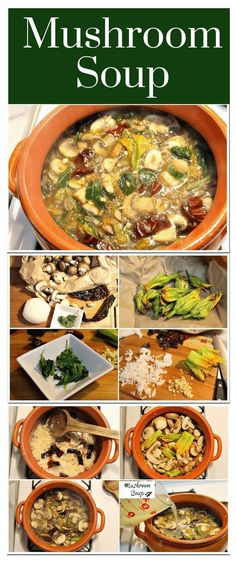Mushroom soups │The gastronomy from the Central states in Mexico has a rich variety of dishes based on the unique mushrooms grow in that area of the country. #mexicanrecipes #food #mexicancuisine #mexicoinmykitchen