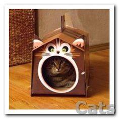 DIY Cardboard Cat Houses. 3 Creative Pet Design Ideas from.