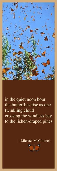 Tanka poem: in the quiet noon hour -- by Michael McClintock.