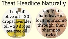 Use olive oil, tea tree and lavender to get rid of head lice/nits without any harmful chemicals or smelly medicated shampoos. The head lice get suffocated by the oils as they breathe through their skin, and the eggs cannot stick to hair coated with oil.