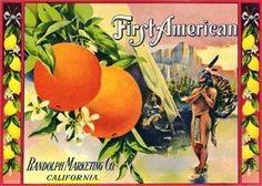 Vintage Crate, Can Labels and Seed Packets - First American Citrus