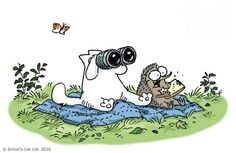 In the Simon's Cat universe hedgehogs are everyone's favorite friend! Simon's Cat & Kitten love hanging out with them. Simons Cat, Cute App, Kitten Love, Illustrations, Pretty Cats, Funny Animal Pictures, Cat Gif, Cat Memes, Cool Cats