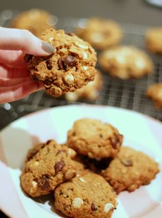 {Double Chocolate Cranberry Oatmeal Cookies}