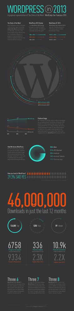 WordPress Infographic 2013