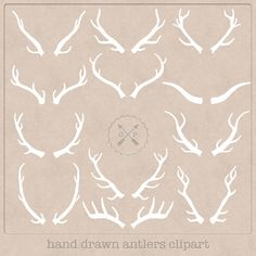 Hand Drawn Antlers Clipart (A set of 12). White, so perfect to use on a chalkboard texture or make logos from this wildlife clipart. on Etsy, $3.50