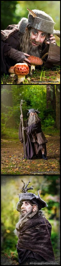 Radagast the Brown by Victoria the Gridler An Animal Wizard.of course my choice for this Halloween! But how to pull it together? Tolkien Hobbit, Lotr, Cosplay Ideas, Cosplay Costumes, Radagast The Brown, Wizard Costume, Awesome Costumes, Rule 63, Character Outfits