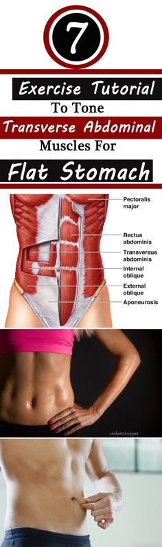 7 Absolutely Working Exercise Tutorial To Tone Transverse Abdominal Muscles For Flat Stomach: