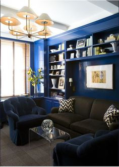 love the blue walls for a library - cozy