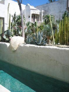 Old California and Spanish Revival Style house and cactus garden, Venice Beach Spanish Style Homes, Spanish Revival, Spanish House, Venice Beach, Landscape Design, Garden Design, Dixon Homes, Living Pool, California Garden