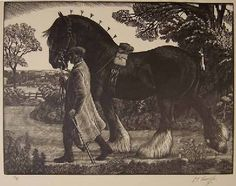 The Shire Stallion by Charles Tunnicliffe