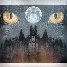 "@up_high_reality's photo: ""Forever watching| @tylerforesthauser #tylerforesthauser_freeforall #plpix #wiggteam #cosmic_ozone #glitchmobinspired #mirrorgram #masterfx #edit #iphoneart #igers #vscocam #mextures #aliensky #forrest #fog #spiderwebs #dark #galaxy #picoftheday #unitedbyedit #staylifted #staylookingup #staring #staringcontest"""