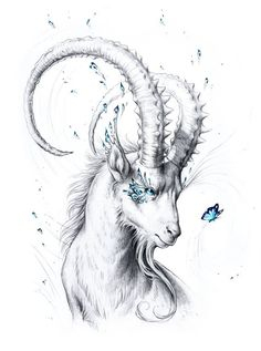 Capricorn: Jojoe
