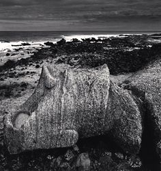 Easter island ~ Black And White Landscape, Easter Island, Photo Art, Places, Water, Travel, Mysterious, Outdoor, Study