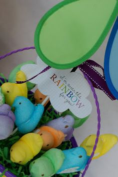 The Laws of My Life: A Rainbow Easter Egg Hunt
