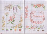 Gallery.ru / Фото #5 - mango flores - geminiana
