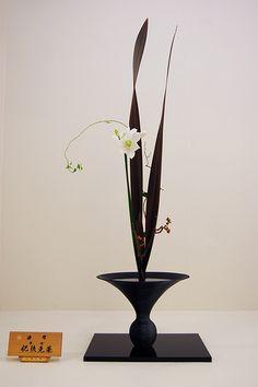 Ikebana Ikenobo, Shoka style