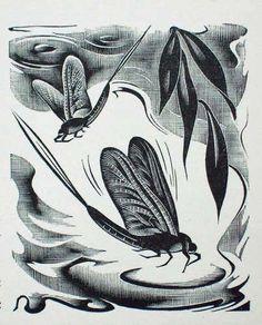 Agnes Miller Parker (British, 1895-1980). Mayflies. 1937. (wood engraving)
