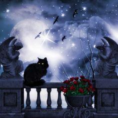 Moon Cat digital art