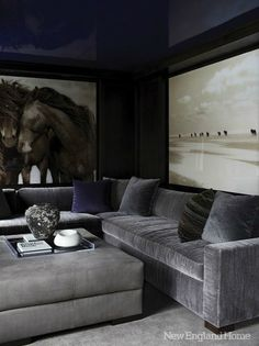 masculine living room..high gloss deep blue ceiling oversized photography, gray velvet sectional..exquisite!