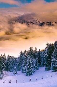 Many travelers think that Italy peaks in the summer. However, when winter comes around there are some truly extraordinary things you can see and do. Click through!