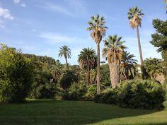 Orto Botanico in Roma, Lazio
