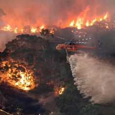 Despite common sense, history, and science, leftist environmentalists would rather fund climate change legislation than save the Earth from wildfires. Bushfires In Australia, Mbappe Psg, Australian Capital Territory, Australian Bush, Australian Politics, Australian Animals, Natural Ecosystem, Volunteer Firefighter, Firefighters Wife