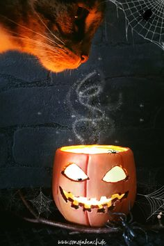 ich zeige euch in diesem DIY wie ihr einen gruseligen Kürbis aus Modelliermasse basteln Könnt. Bastelt eure perfekte und einfache Halloween Deko, einfach aber effektvoll! Spooky Halloween, Diy Fimo, Hocus Pocus, Pumpkin Carving, German, Autumn, Holidays, Art, Scary Halloween Pumpkins